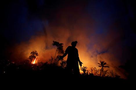 amazonios-pano-apo-17-000-foties-ton-oktovrio-pics