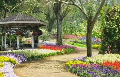 Informasi seputar Taman Bunga Nusantara, Cianjur dan cara ke Taman Nusantara Cianjur