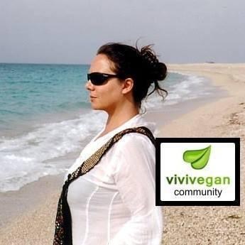vivi vegan blog
