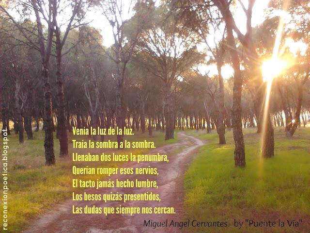 recital-poesia-yucata-miguel-angel-cervantes-luz