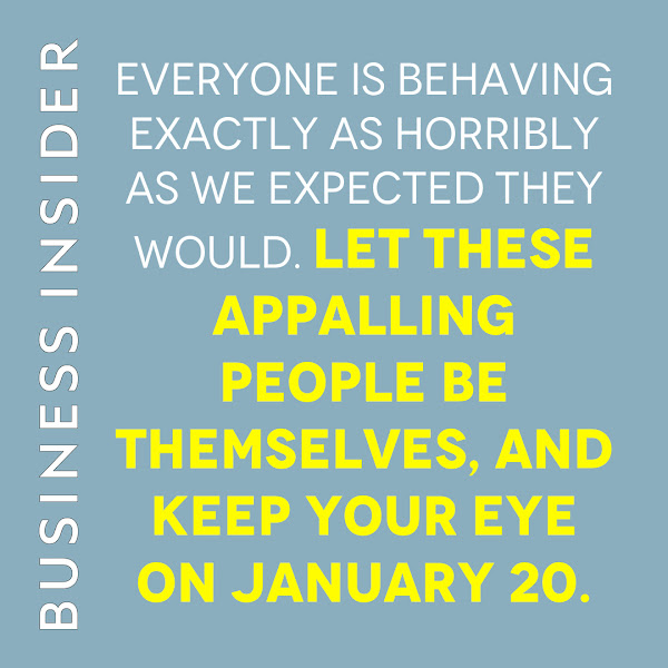 Everyone is behaving exactly as horribly as we expected they would. Let these appalling people be themselves, and keep your eye on January 20. — Linette Lopez, Business Insider