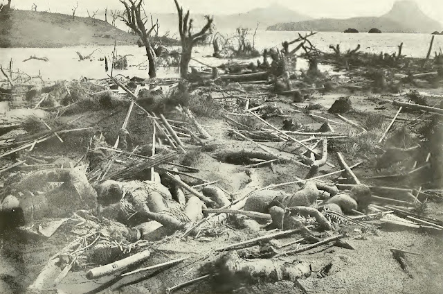Death and destruction. Scene on Volcano Island, January 31, 1911, the day after the great eruption.
