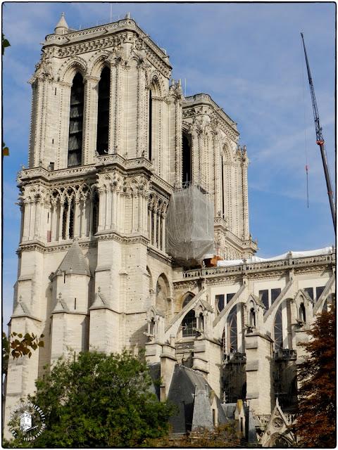 PARIS (75) - La cathédrale Notre-Dame en travaux !