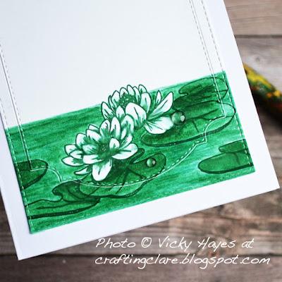 Peaceful waterlilies
