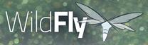 Wildfly 8.2