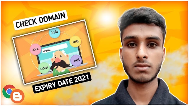 How to check domain expiry date 2021