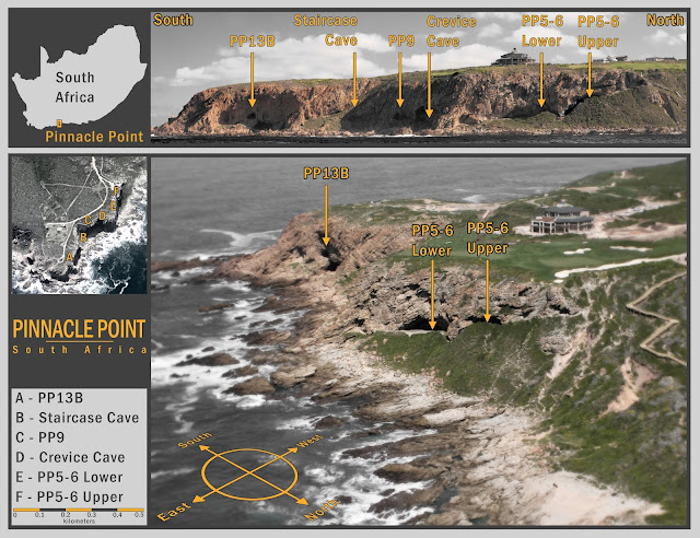 Humans thrived in South Africa through the Toba super-volcanic eruption ~74,000 years ago