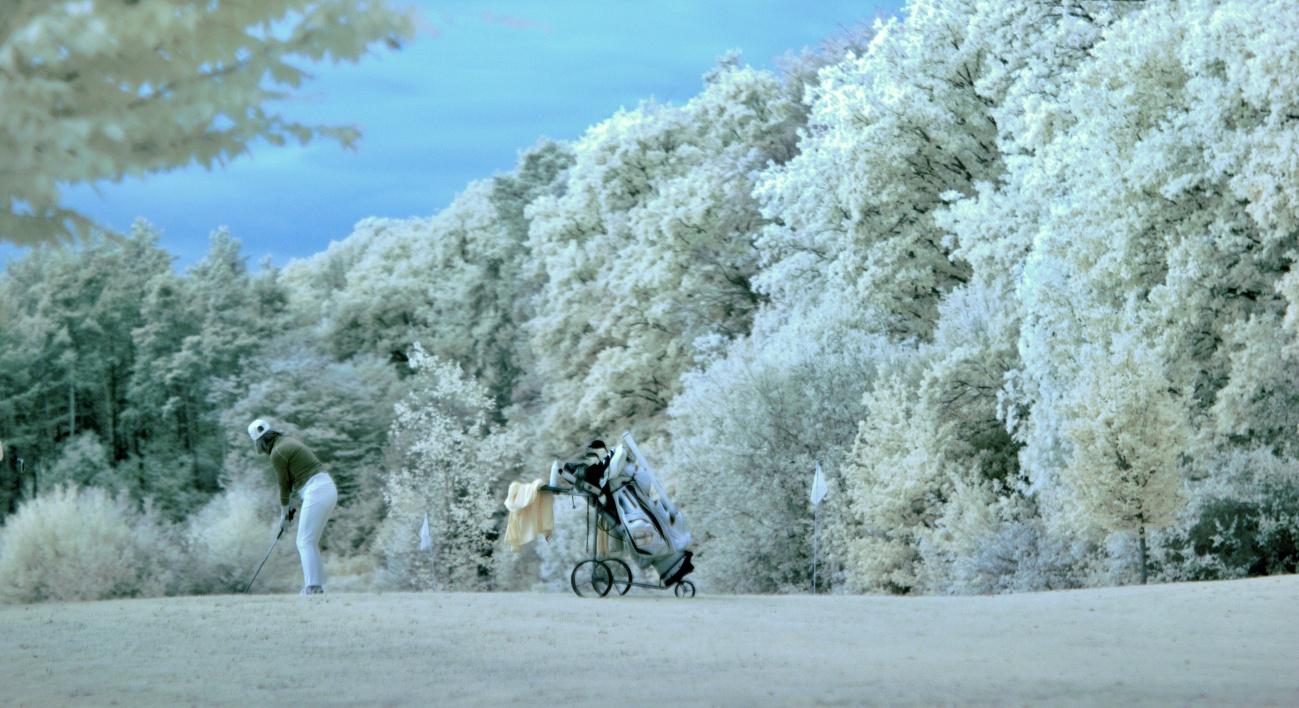 Der infrarote Herbst (1)