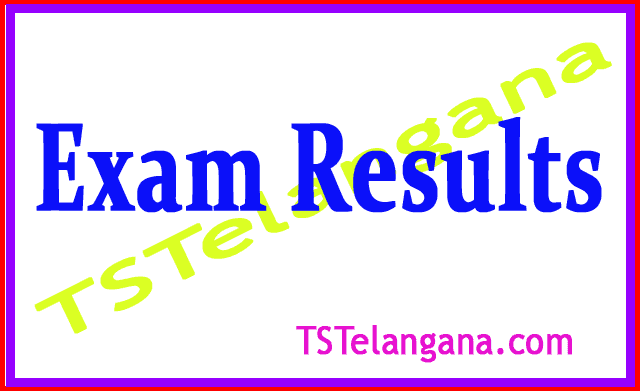 Satavahana University B.Ed  Exam Results