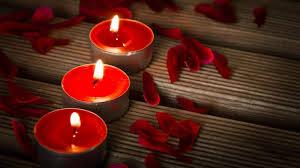 Rose & Rose Petals HD Wallpapers Download Free