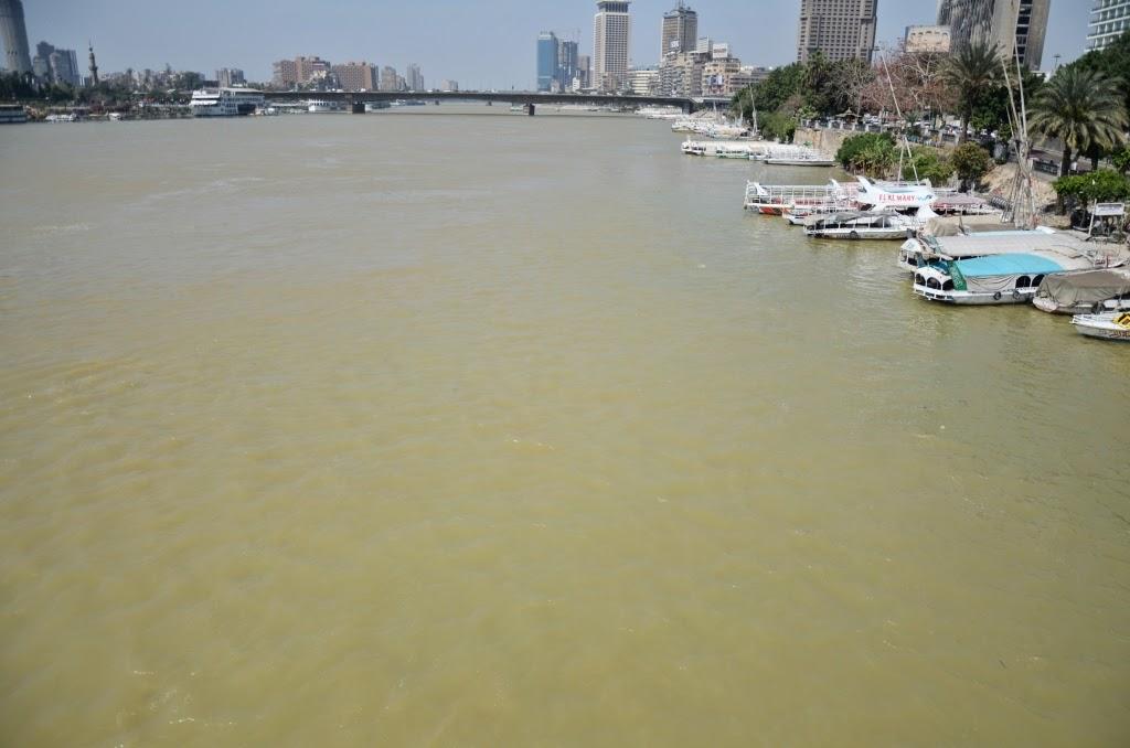 أصفرار وتلوث مياه النيل