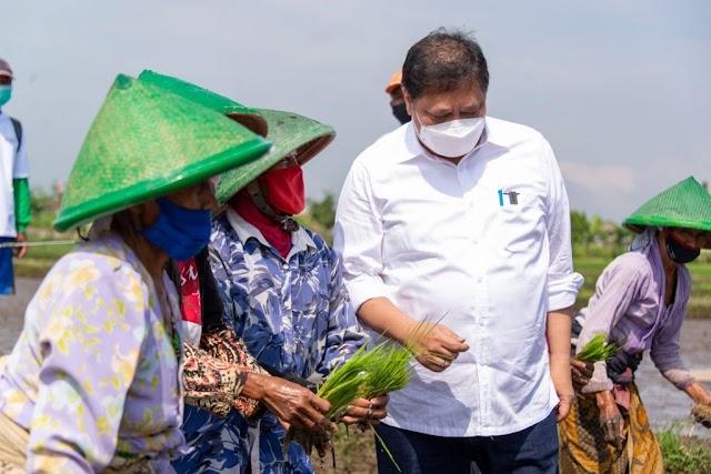 Program Smart Farming Petani Milenial Dukung Peningkatan Produktivitas