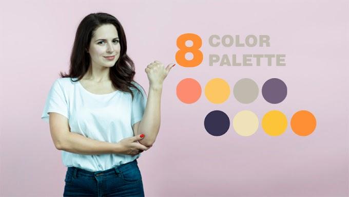 Color Palette Orange PNG 8 Color Combinations   Samanstock