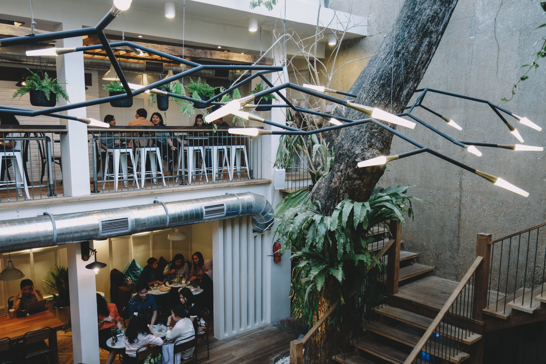kitchen design restaurant  | 1000 x 666