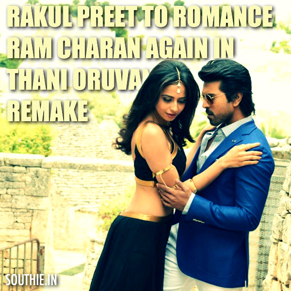 Hot Rakul Preet Singh heroine for Ram Charan Surender Reddy movie. After these couple looked good in Bruce Lee the Fighter the makers have gone ahead with the same heroien for Ram Charan. Hot Rakul Preet in RC 10, Hot Rakul In RC 10, Rakshak, Thani ORuvan remake, Ram Charan Surender Reddy Movie.