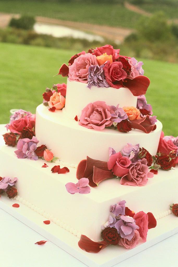 Wedding Cake Wedding Pictures Wedding Cakes 683x1024