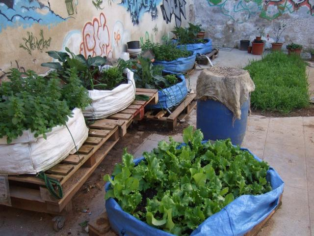Style And Design Ideas For A Community Garden