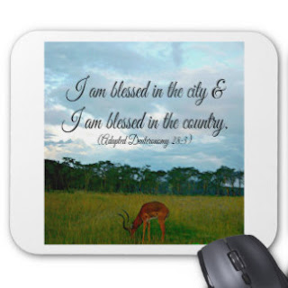 I am blessed in the city I am blessed in the country mouse pad