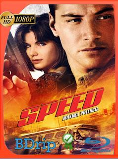 Maxima Velocidad (1994) Latino BDRIP Remasterizado [Google Drive] Onix