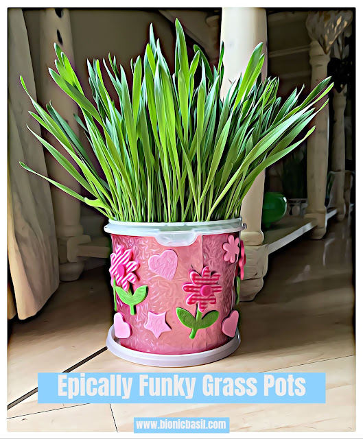 Crafting with Cats ©BionicBasil® Epically Funky Grass Pots