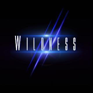 WILDNESS_-_Wildness_3000x3000px.jpg