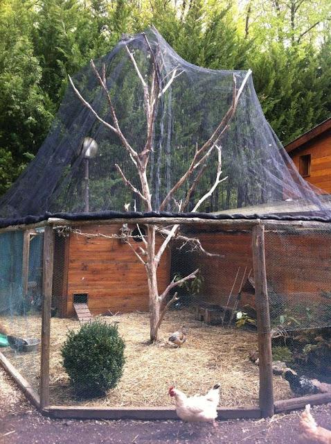 El blog de la elena un blog dulce divertido y for Construir caseta madera jardin