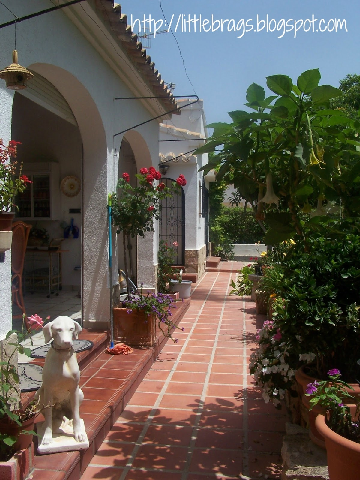 Little Brags My Dad S House In Spain