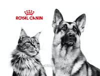 Royal Canin #AndràTuttoMeglio : ritira un campione omaggio per cane o gatto