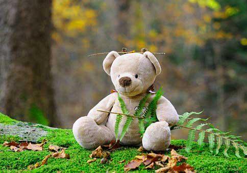 Teddy%2BBear%2BImages%2BPics%2BHD34