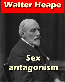 Sex antagonism (1913)