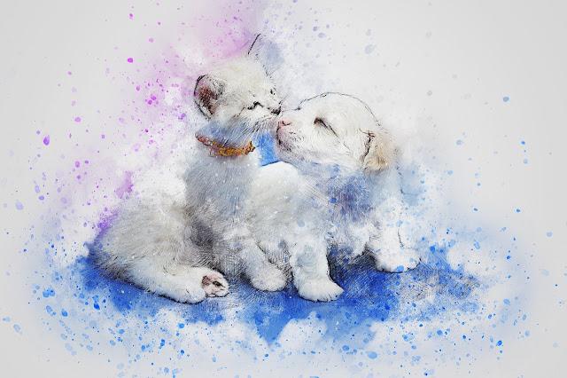 حيوانات جميلة مرسومة
