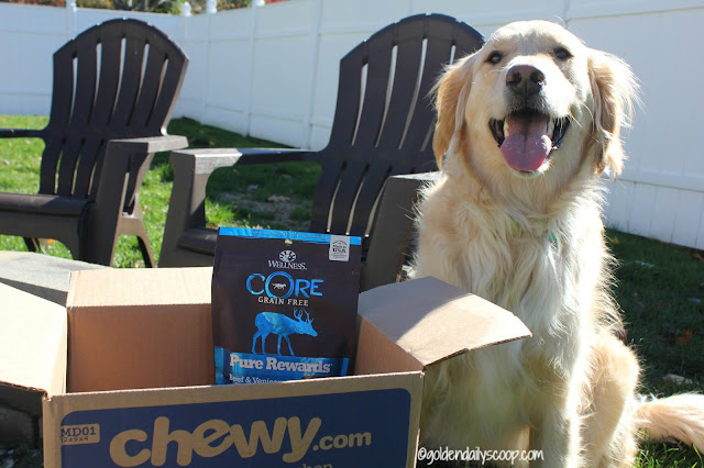 healthy and grain-free dog treats review