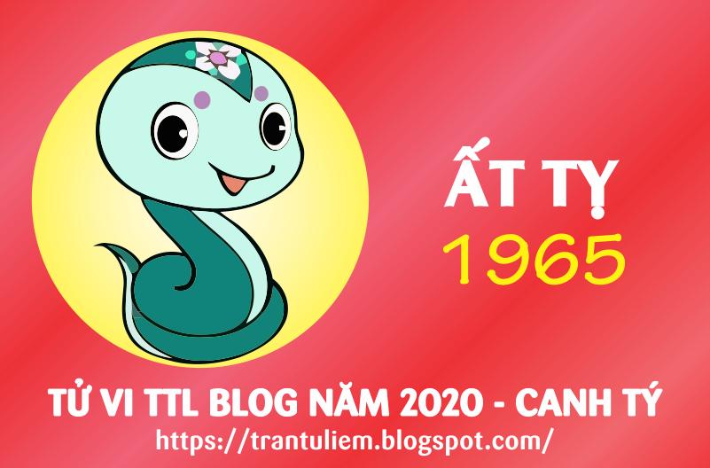 TỬ VI TUỔI ẤT TỴ 1965 NĂM 2020