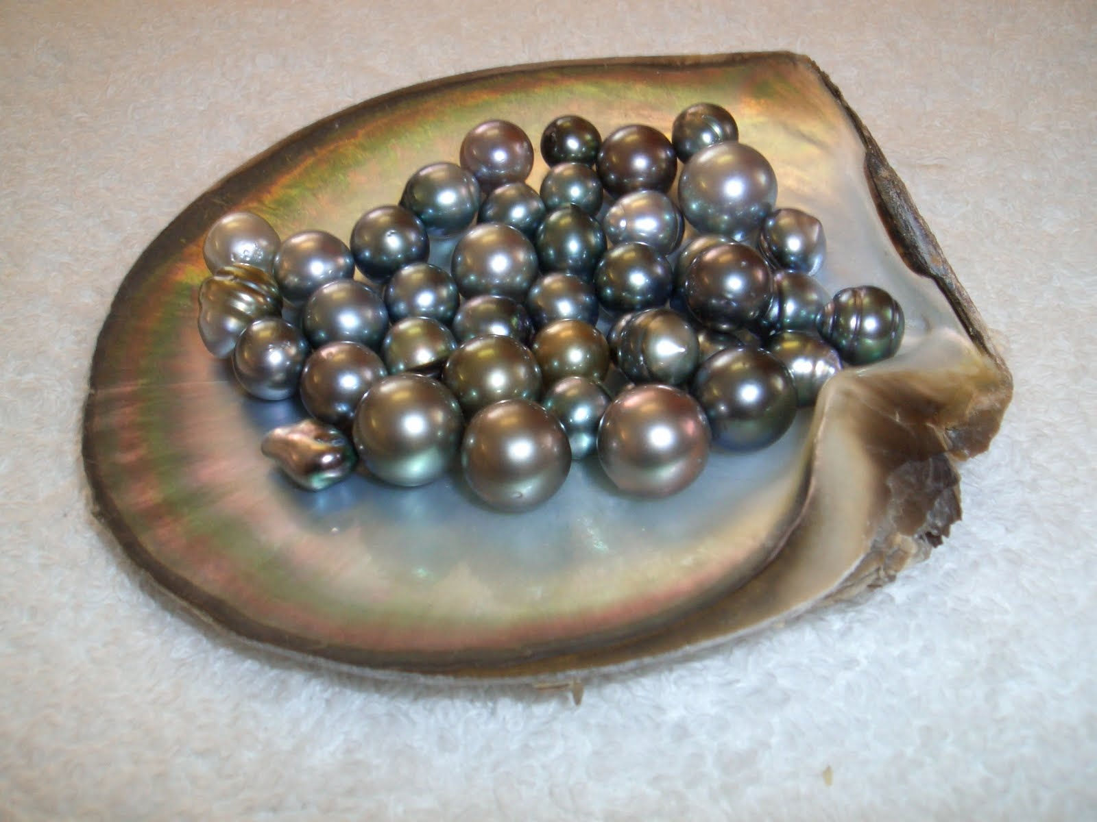 Susan Ronan Studio: All About Pearls