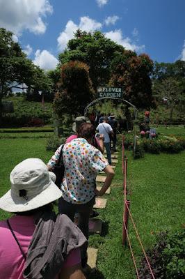 flower garden philippines