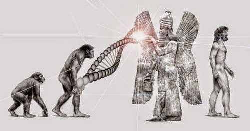 Mankind-Human-Species-Missing-Link-the-Anunnaki.jpg