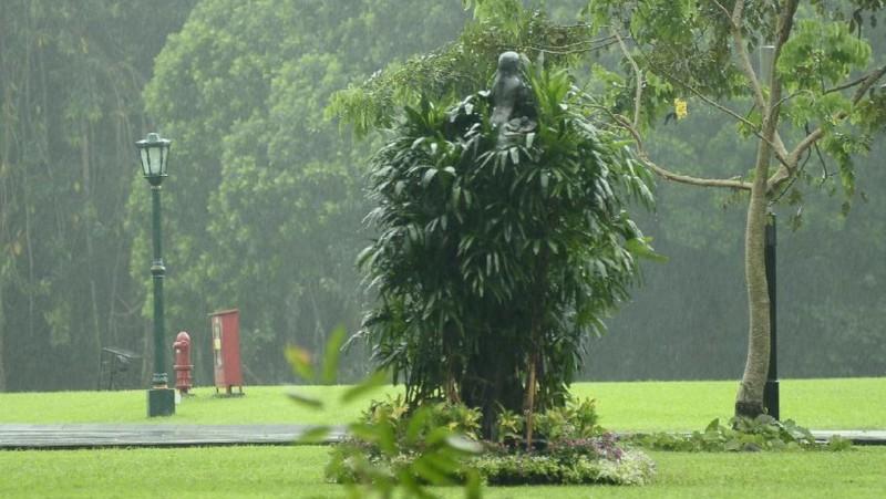 Patung perempuan di Istana Bogor ditutupi daun demi menghormati Raja Salman