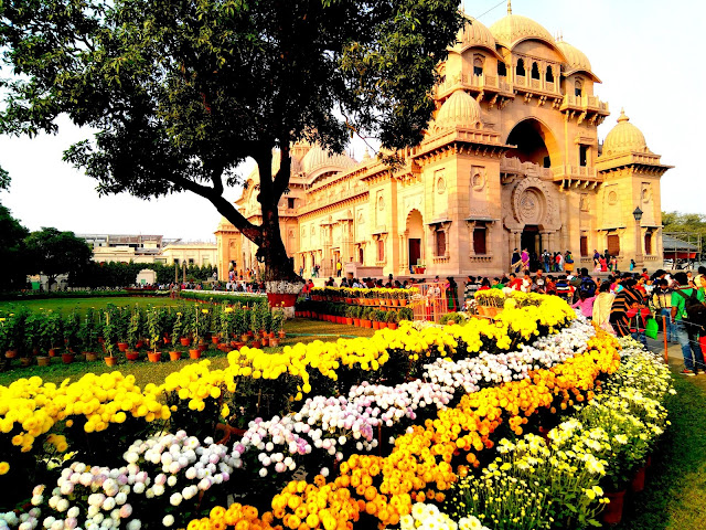 Monumental Flora