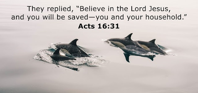 """They replied, """"Believe in the Lord Jesus, and you will be saved—you and your household."""""""