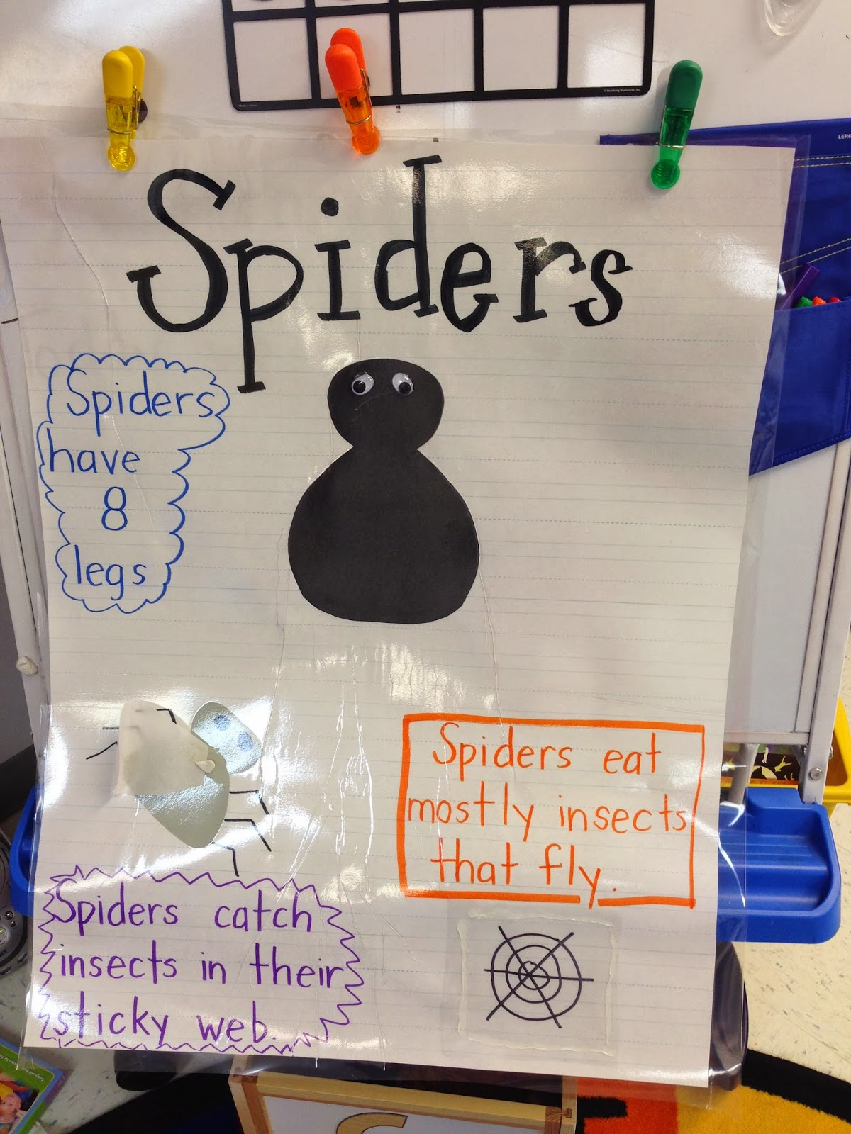 Teaching With Tera The Very Busy Spider D Preschoolers