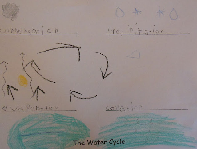 water cycle paper - photo #21