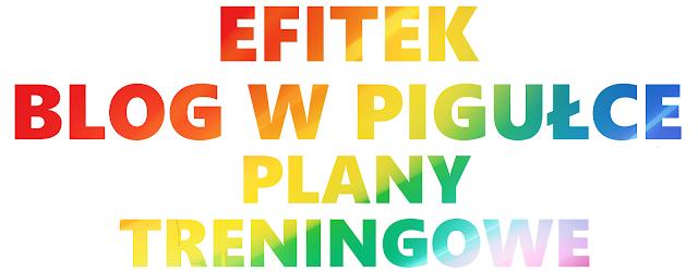 Blog w pigułce - PLANY TRENINGOWE