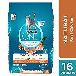 Best-dry-cat-food