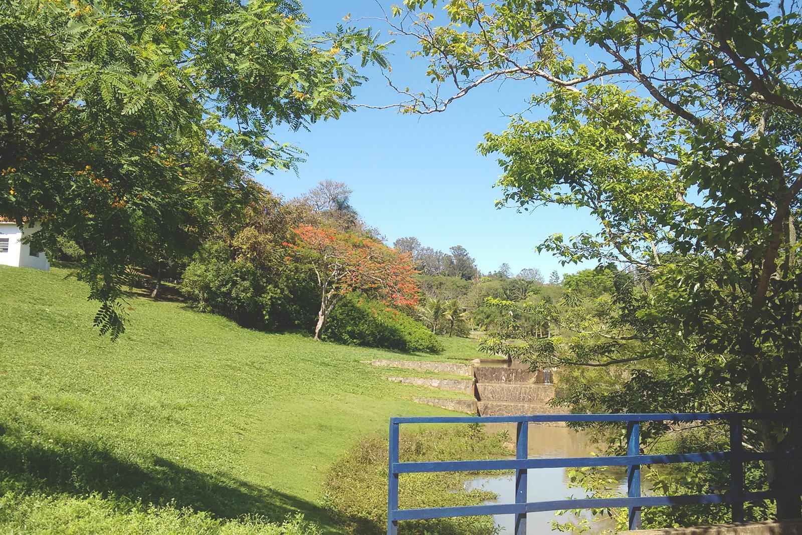 ponte parque ecológico campinas