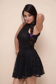 Actress Bhanu Sri Stills in Black Short Dress at Dandu Movie Audio Launch  0010.jpg