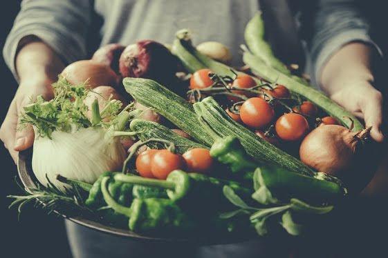 Contoh Tanaman Hortikultura dalam Pertanian yang Perlu Diketahui