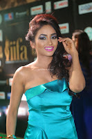 Beautiful Pooja Shri in a Neon Blue Halter Top    Exclusive 005.JPG