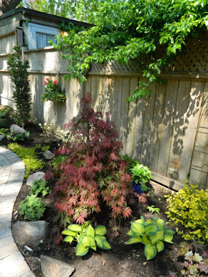 Cabbagetown garden makeover after by Paul Jung Toronto Gardening Services
