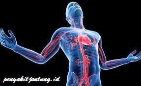 5 Pertolongan Pertama Gejala Serangan Jantung