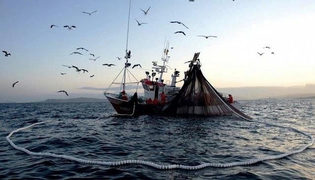 Prácticas pesqueras predatorias de China en las Galápagos
